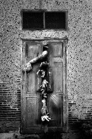door zombies.jpeg