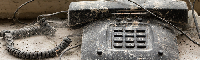 telephone cobwebs small